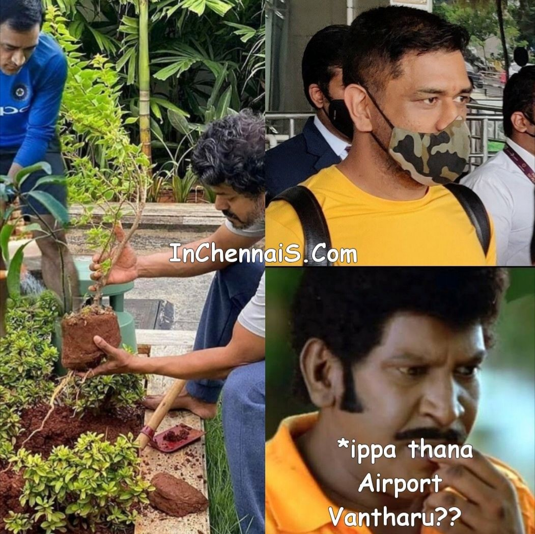 VIjay and Dhoni Planting Tree meme